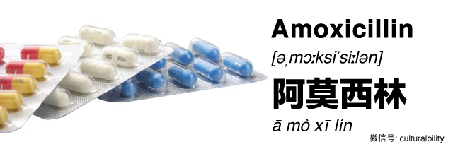 amoxicillin in chinese western medicine in china culturalbility