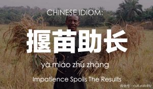 impatience spoils the results chinese idiom culturalbility chinese culture language